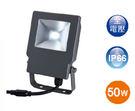 【燈王的店】舞光 LED 50W 戶外洗牆燈 正白/暖白 ☆OD-FL50