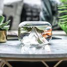 創意雪山頂玻璃金魚缸辦公桌小型桌面水培花...