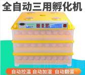 恒星孵化機全自動家用型雞鴨鵝孵化器36枚小型48枚孵蛋器孵化箱 晴川生活館 NMS