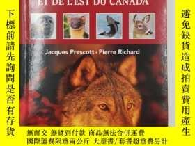 二手書博民逛書店Mammifères罕見du Québec et de l Est du Canada N. éd. (Frenc