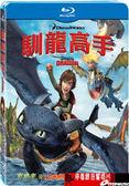 【停看聽音響唱片】【BD】馴龍高手 How to Train Your Dragon