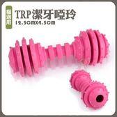 *WANG*【02152321】寵喵樂寵物TRP潔牙啞玲-環保無毒 磨牙.健齒玩具