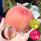 梨山水蜜桃10粒共2斤10兩(含運)...