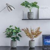 北歐仿真植物盆栽綠植客廳擺件
