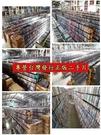 挖寶二手片-P17-152-正版DVD-其他【世界那麼大:土耳其 火熱肚皮舞】-地理風光類(直購價)
