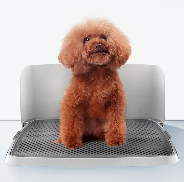 寵物廁所 創新設計狗狗廁所泰迪金毛狗尿盆便盆中小型犬大號可折疊寵物【快速出貨八折下殺】