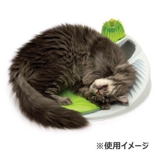 *WANG*喵星樂活 Hagen【Catit 2.0樂活舒壓按摩床】