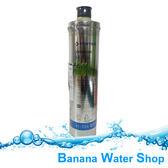 『Banana Water Shop 免運費送到家』美國原裝進口 EVERPURE H-104/H104濾心
