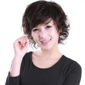 假髮(短髮)-時尚手織成熟中老年女假髮73em10【時尚巴黎】