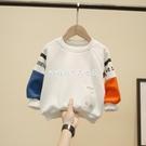 男童2020春秋款新款衛衣兒童春秋裝洋氣韓版中小童上衣寶寶秋裝