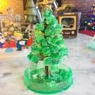 結晶樹 美國兒童魔法長青樹雪花結晶樹會開花紙樹開花科學實驗玩具禮物 星河光年