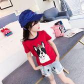 童裝女童短袖t恤夏裝圓領純棉中大兒童韓版女孩半袖上衣 奇思妙想屋