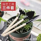 家用多肉植物園藝鬆土工具套裝盆栽種花鏟子花鍬耙子三件套小鐵鏟 樂活生活館