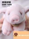 小寵物可愛迷你豬仔娃娃小豬豬公仔小豬毛絨毛絨玩具趴趴豬 玩具【小獅子】