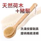 ⭐星星小舖⭐ 台灣出貨 木製鬃毛刷背刷 ...