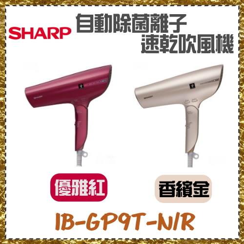 SHARP 夏普 自動除菌離子速乾吹風機 IB-GP9T-N