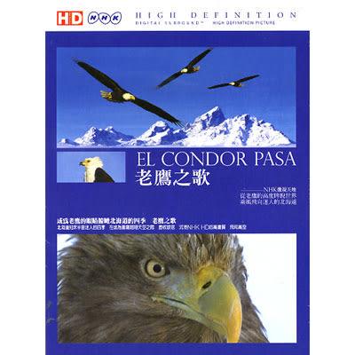 高畫質HD-老鷹之歌DVD