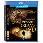 Blu-ray荷索之3D秘境夢遊BD