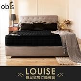 鑽黑系列-Louise蜂巢獨立筒無毒床墊/雙人加大6尺/H&D東稻家居