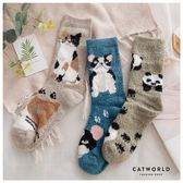 Catworld 日和小動物珊瑚絨襪【18900331】‧F*特價