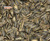 【吉嘉食品】悅情 水煮葵瓜子(黑糖) 500公克,產地中國{273-822}[#500]
