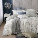 鴻宇 雙人特大床包薄被套組 天絲300織 米堤 台灣製 T20109