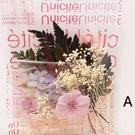 永生花,浮游花,DIY簡易配套材料包
