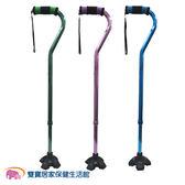 富士康 鋁合金時尚休閒不倒拐 拐杖 助行器-FZK-2204 (三色可選)