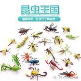 昆蟲玩具仿真動物套裝蟲子動物玩具蜘蛛螞蟻蜜蜂塑膠兒童恐龍玩具 晴天時尚館