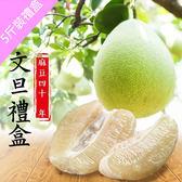 【林家麻豆文旦城】正宗40年老欉文旦4箱(5斤/箱)