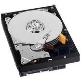 【免運費】WD 3.5 吋 CaviarBlack 500GB SATA 硬碟 ( WD5003AZEX )