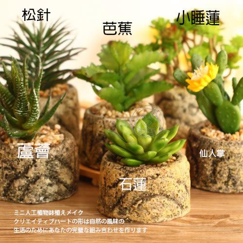 【zoo寵物商城】 居家|OL》桌面擺設療癒系美觀迷你仿真小多肉植物盆栽