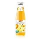 德國蘋果杏桃沙棘汁(500ml)