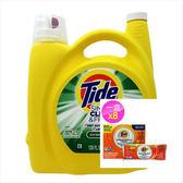 美國 Tide濃縮洗衣膏-清新柑橘(138oz)*1+洗衣槽洗劑(75g)*8包