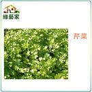 【綠藝家】F03.芹菜 (田尾種)種子15000顆