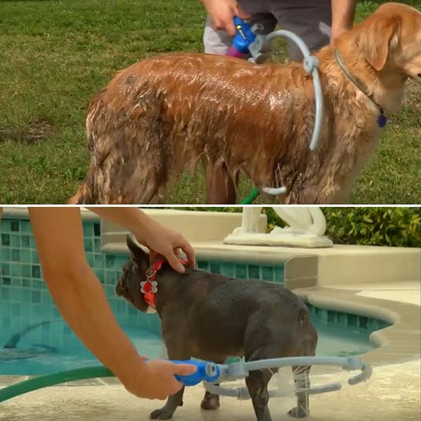 寵物 洗狗器 洗澡 【創意巴巴】WOOF WASHER 360 第2代 多功能 洗狗神器