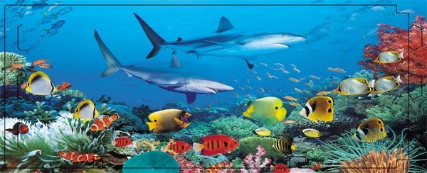 【3D 立體存錢筒】#9203 鯊魚