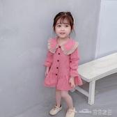 女寶寶春季連身裙新款韓版洋氣女童春秋裙子34歲兒童公主裙5(聖誕新品)