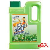 威猛先生地板清潔劑-清新早晨2000ml*6(箱)【愛買】