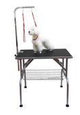 【GOGOSHOWER狗狗笑了】美國Kim Laube 樂比專業寵物美容桌_S號
