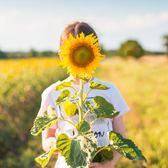 花卉種子 向日葵種子高產瓜子矮桿油葵大粒食用盆栽觀賞太陽花菊花卉種籽孑-凡屋