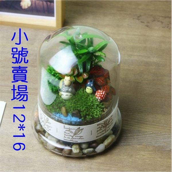 [拉拉百貨]景觀玻璃罩-小 生態瓶 玻璃罩 造型別緻 花藝 不雕花擺設 創意禮物 多肉 擺飾 盆栽