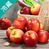 紐西蘭櫻桃蘋果X6桶/箱【愛買冷藏】