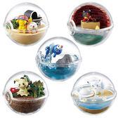 寶可夢 飼育生態球 擺飾 盒玩 阿羅拉地區篇 Pokemon 神奇寶貝 日本正品 該該貝比日本精品 ☆