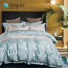天絲 Tencel 清新派 床罩 雙人七件組 100%雙面純天絲 伊尚厚生活美學