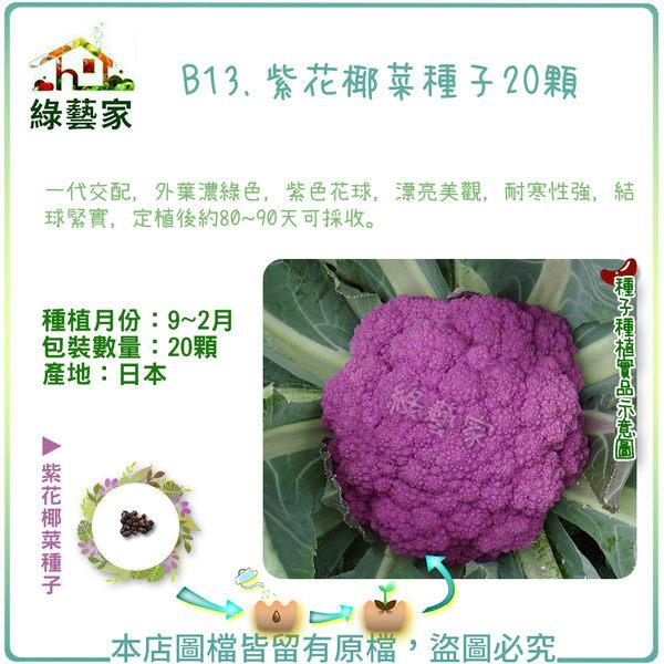 【綠藝家】B13.紫花椰菜種子20顆