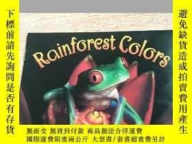 二手書博民逛書店rainforest罕見colorsY283241