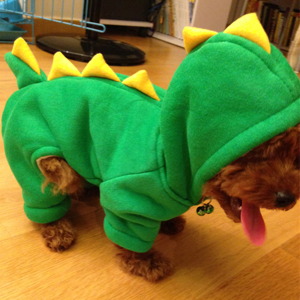 可愛爆萌寵物恐龍變身裝泰迪狗衣服秋冬加厚狗棉衣寵物衣服四腳衣 滿天星