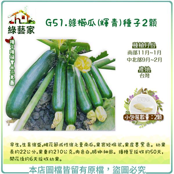 【綠藝家】G51.綠櫛瓜(輝青)種子2顆