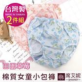 兒童內褲 棉質女童內褲 草莓小包褲 (二入組) 台灣製造 No.8007-席艾妮SHIANEY
